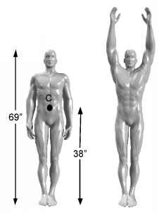 Center Mass Body Segment