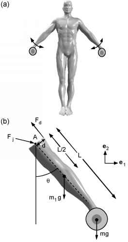 Pleasing Examples From Weight Lifting Body Dynamics Guws Medical Wiring Cloud Hisonuggs Outletorg