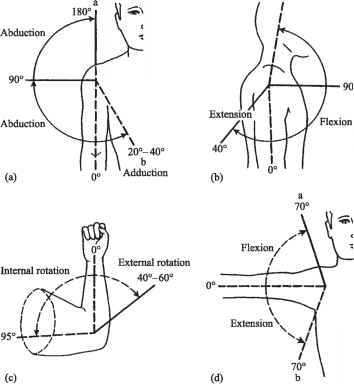Normal Range Joint Motion