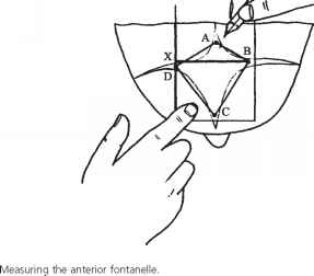 anterior fontanelle size - head circumference - guws medical, Cephalic Vein