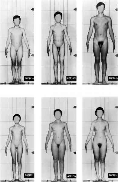 Images puberty vagina and