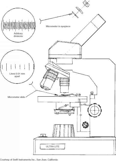 Diagram Micrometer